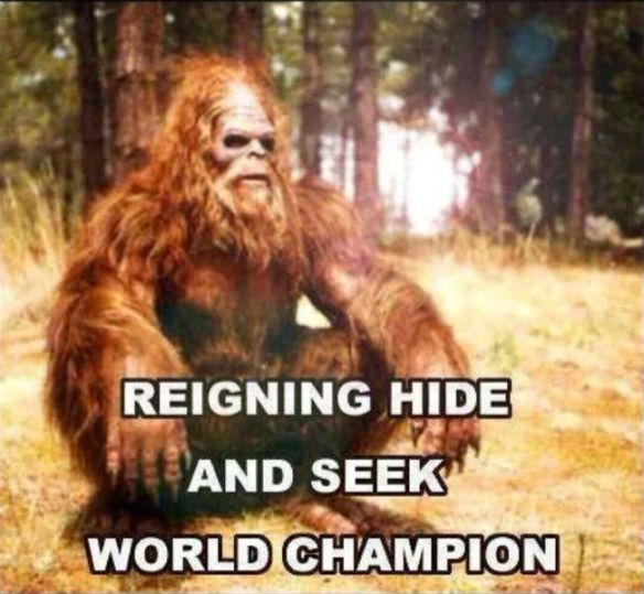 big-foot-reigning-hide-and-seek-world-champion-2