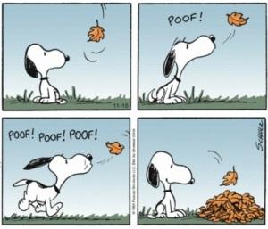 snoopy-leaf-pile1