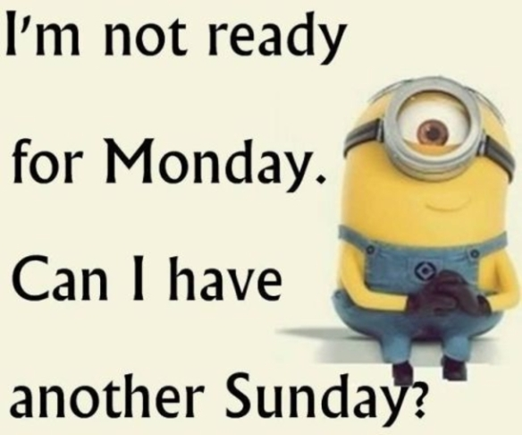6-4315-38-Funny-Minion-Quotes-Of-The-Day-307