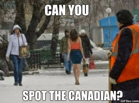 funny pictures meme spot the canadian?w=660 random thoughts for tuesday morning random writings on the