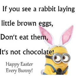 165293-Funny-Easter-Minion-Quote