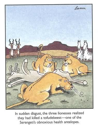 far side lions