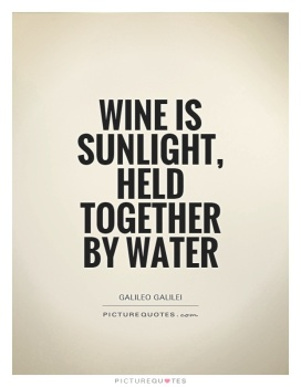 wine-is-sunlight-held-together-by-water-quote-1