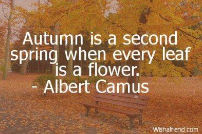 1194-autumn