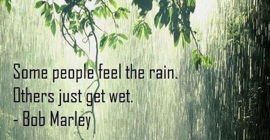 some-people-feel-the-rainothers-just-get-wet-funny-quote