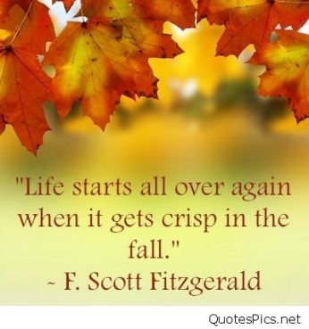 fall-quote-on-image1