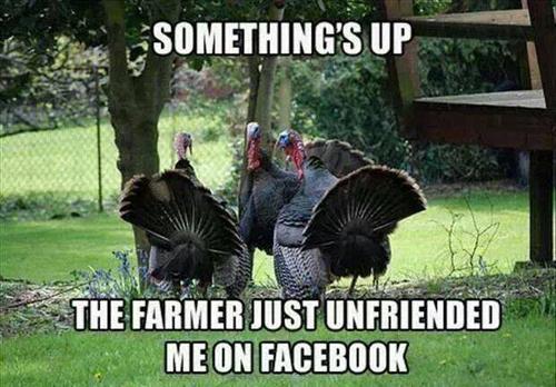 funny-thanksgiving-jokes