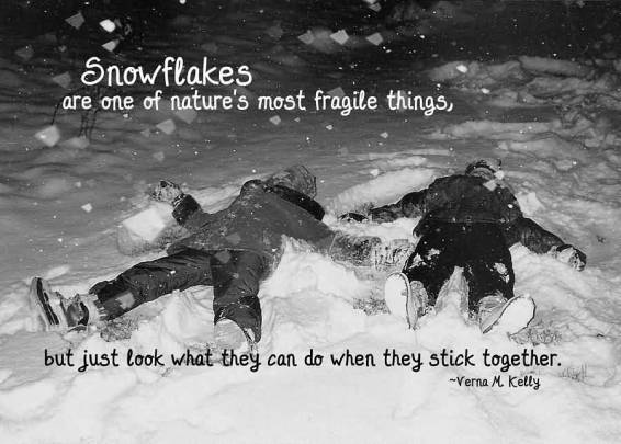 great-winter-quote-snowflakes-are-one-of-natures-most-fragile-things-but-just-look-what-they-can-do