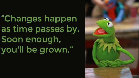1322736549-kermit-the-frog-quotes