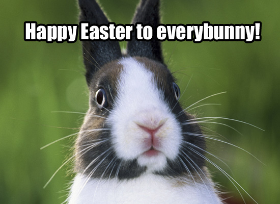 funny-easter-bunny-quotes