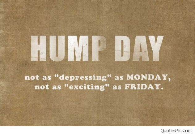 hump-day-quotes
