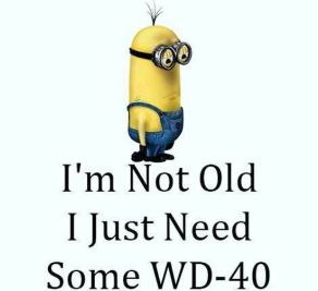 Funny-Minions-Quotes-of-The-Week-044