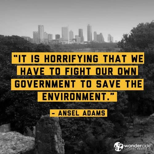 0cd164af792769f43efdb57b299991f1--ansel-adams-quotes-government-quotes