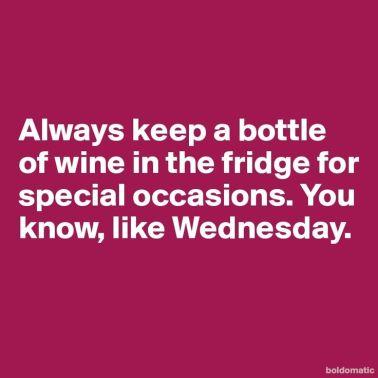 2b57e3c841ad9c732e8cccb3dbb43b3a--wednesday-humor-wednesday-hump-day