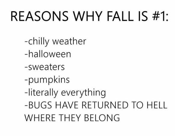 55d512a5a528701166f63fc173c2bdef--autumn-fall-the-fall