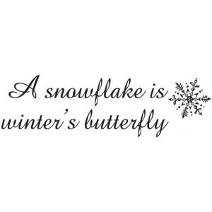 32aac5921a0cda8785b4173026287750--snow-quotes-winter-quotes