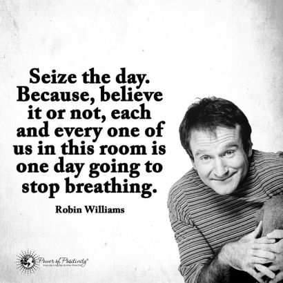 5bca7453575db56dbcd43df3a6364c19--robin-williams-quotes-robin-williams-funny