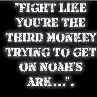 third-monkey-on-ark