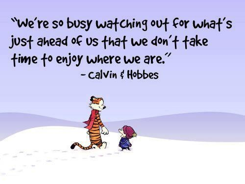 calvin-and-hobbes-quote-1