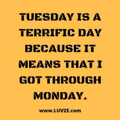 funny-Tuesday-quotes.jpg