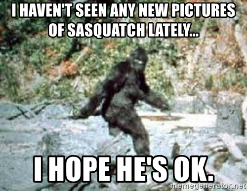 i-havent-seen-any-new-pictures-of-sasquatch-lately-i-hope-hes-ok