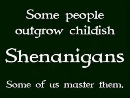 3980e07ee40ae3081efb49315c668927--irish-kilt-shenanigans-quotes