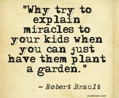 25-trending-garden-quotes-ideas-on-pinterest-gardening-quotes-gardener-quotes-and-sayings
