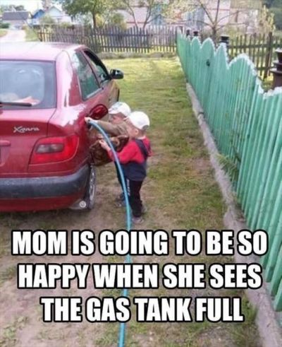 ed959b734ecadda64ab6680b7632ef25--funny-pictures-with-captions-pictures-of