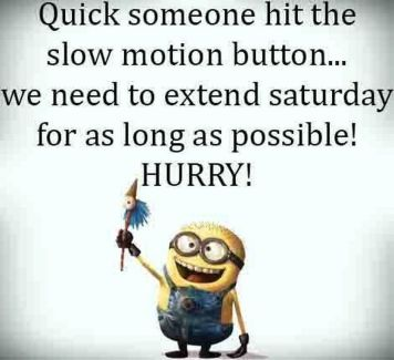 204368-We-Need-More-Saturday-Funny-Minion-Quote