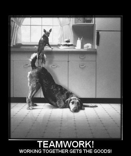 teamwork-12