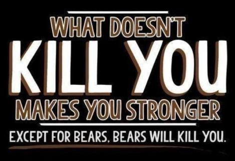 Bears-will-kill-you