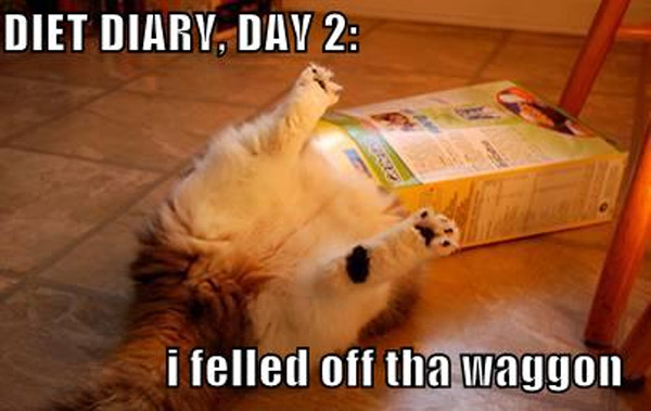 diet-diary-funny